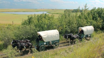 The wagon train rolling out. Photo by Chris McBeath.