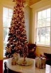 Christmas tree in Loyd Hall Plantation house