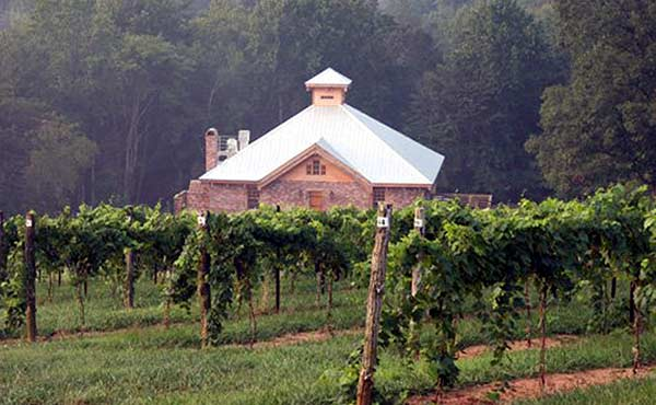 Elkin Creek Vineyard in North Carolina wine country