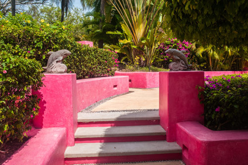 Pink walls and dolphins sculptures