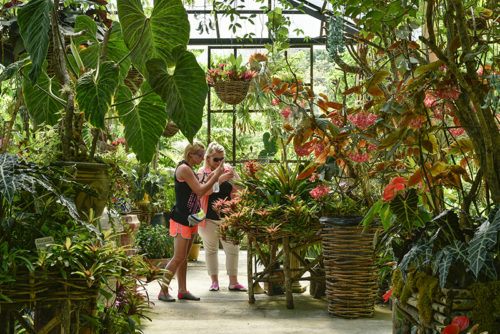 Visitors photographing exotic plants at Vallarta Botanical Garden, Puerto Vallarta, Mexico.