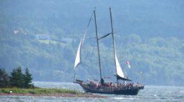 Baddeck the Amoeba schooner under sail