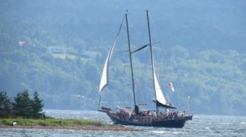 Baddeck the Amoeba schooner under sail