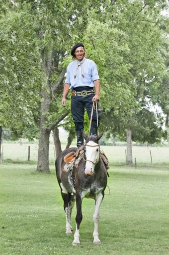 Gaucho demonstrates the trust between horse and rider at San Antonio de Areco Ranch