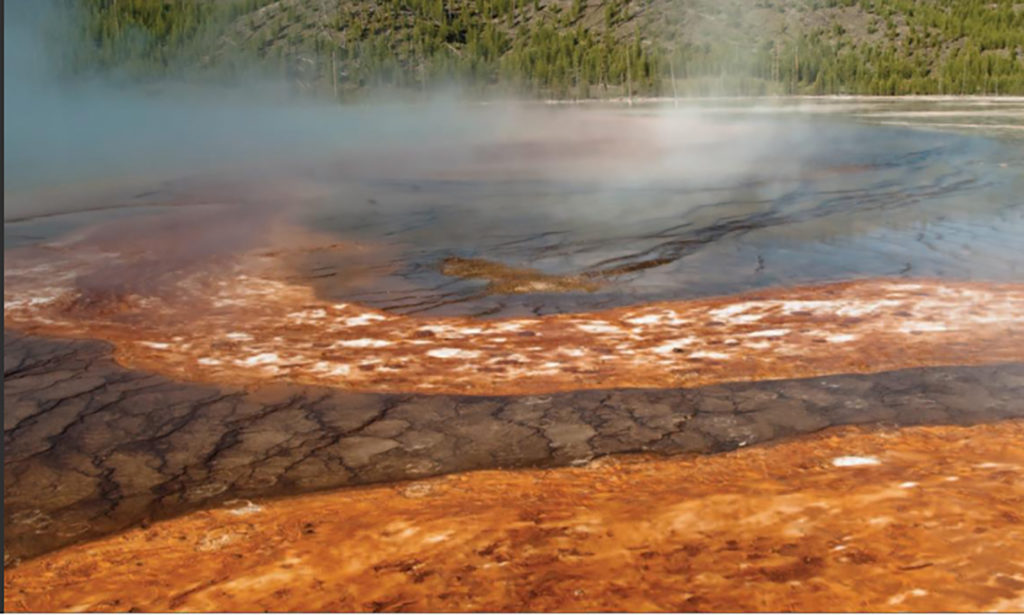 Tangerine Spring, Yellowstone National Park