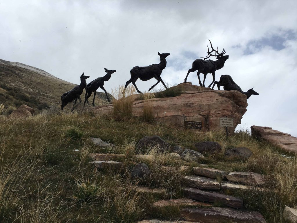 National Wildlife Museum - Bronze Elk on Rocks