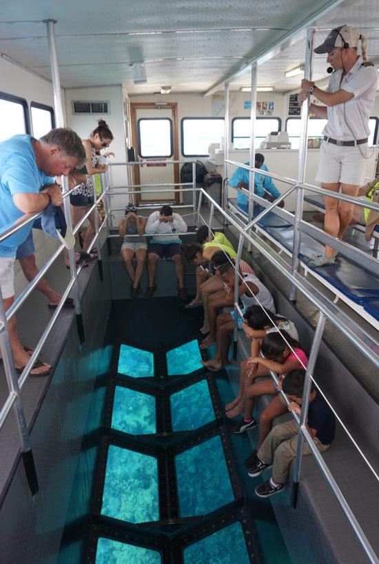 Blass Bottom Boat Viewing Florida Keys