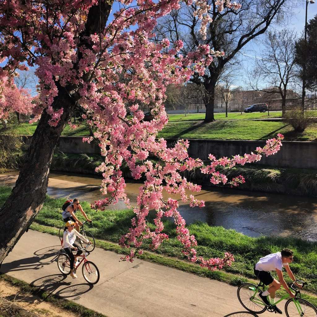 Cherry Creek Bike Path